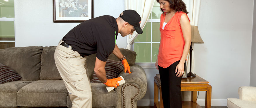 New York City, NY carpet upholstery cleaning